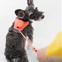 BKID Develops Hybrid Dog Harness with a Lightweight, Retractable Leash Module for 'Tailhigh'
