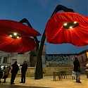 Giant Flowers Bloom as Pedestrians Approach