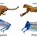 (Paper) Inspired by Cheetahs, Researchers Build Fastest Soft Robots Yet