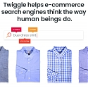 Twiggle Raises $15M in New Funding to Make E-Commerce Search More Intuitive