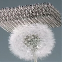(Video) Boeing has made a metal structure light enough to sit on top of a dandelion