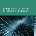 (PDF) BCG - Pairing Blockchain with IoT to Cut Supply Chain Costs