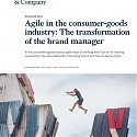 (PDF) Mckinsey - Agile in The Consumer-Goods Industry