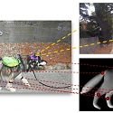 (PDF) Who's a Good AI ? Dog-based Data Creates a Canine Machine Learning System