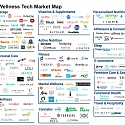 (Infographic) The Wellness Tech Market Map