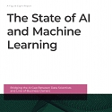 (PDF) The State of AI and Machine Learning Report