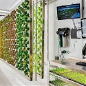 Ponix Is Bringing Local Produce to Food Deserts With Hydroponic Technology