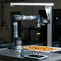 These Industrial Robots Get More Adept With Every Task - Vicarious