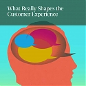 (PDF) BCG - What Really Shapes the Customer Experience