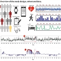(Paper) Stanford - Pre-Symptomatic Detection of COVID-19 from Smartwatch Data