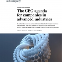 (PDF) Mckinsey - The CEO Agenda for Companies in Advanced Industries