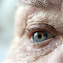Harvard Medical School : Anti-Aging Gene Therapy Restores Vision