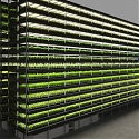 Denmark's Wind-Powered Vertical Farm Will Produce 1K Tons of Greens a Year